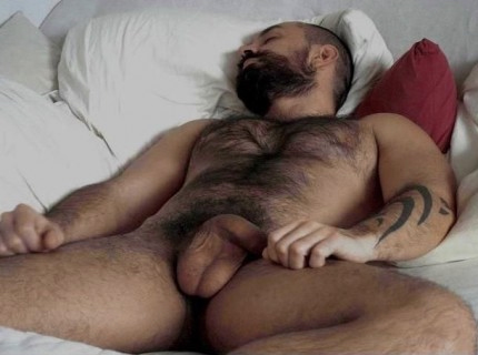 gay poilu grosse bite rencontre bear gay